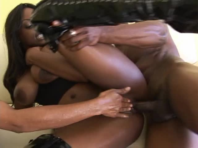 Properties leaves Misty stone and jada fire